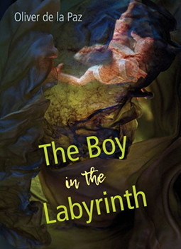 Boy from the Labyrinth cover