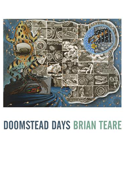 doomstead days cover